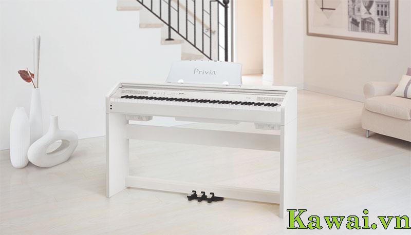 dan piano dien casio