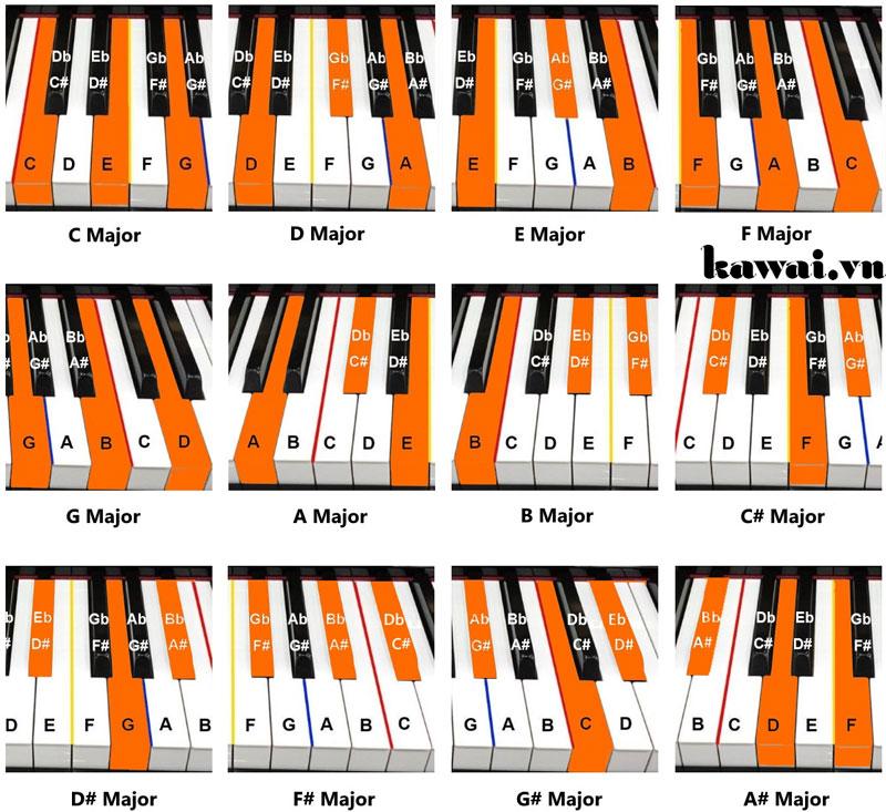 Hướng Dẫn Cách Đánh Những Hợp Âm Piano Cơ Bản